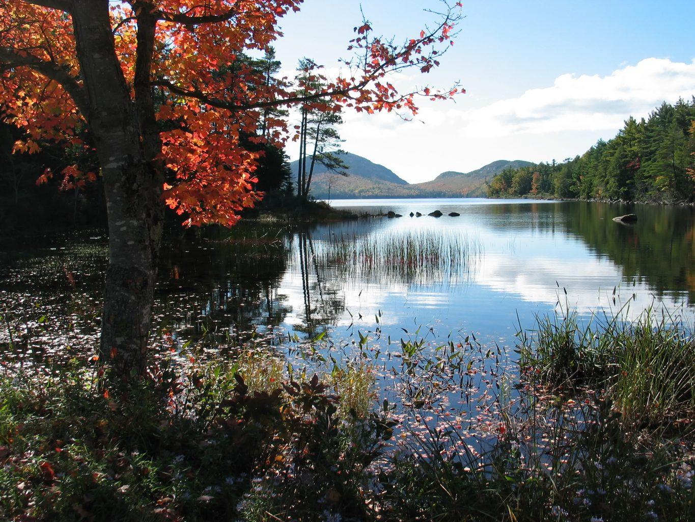 scenic Maine water