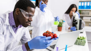 Laboratory technicians verify the quality of vegetables